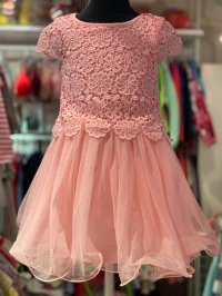 #11713 size:4-5/5-6/6-7/7-8/8-9/9-10yrs Pink color embroidered flower pattern party dress
